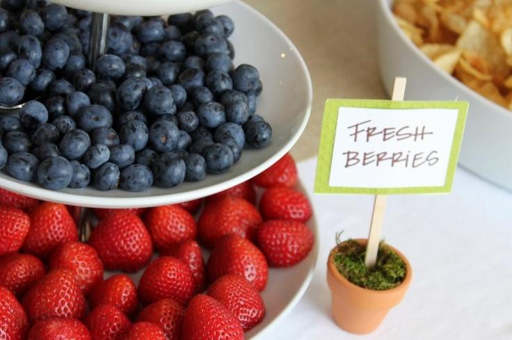 Love the Fresh Berries Sign, Peter Rabbit Shower