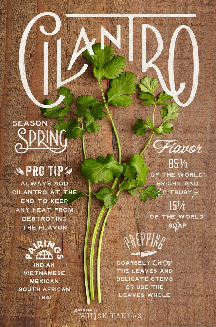 Herb Hack - Cilantro Nothing divides people quite like cilantro, but the faithful few accept no substitutes for brightening up their dishes. Its distinctive flavor pushes through and cools off hotter fare. Cilantro tempers not only spicy foods, but freshly fried foods as well, creating a soothing sensation amidst piping hot cuisine. Recipe: Fried Okra and Shallots with Fresh Cilantros