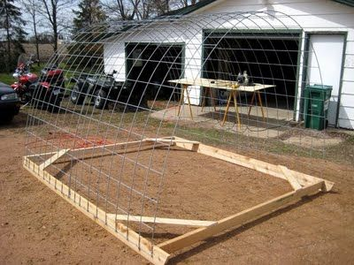 chicken hoop house. Perfect for the meat chickens