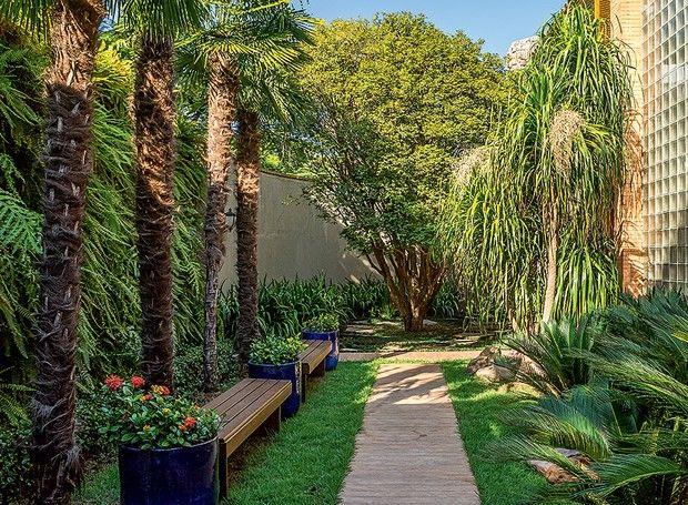 """As palmeiras moinho-de-vento ficam em frente a um jardim vertical de samambaias. """"Queria que o espaço fosse mais do que uma passagem. Coloquei dois bancos de madeira para criar uma área de contemplação"""", conta a paisagista Ana Paula Magaldi."""