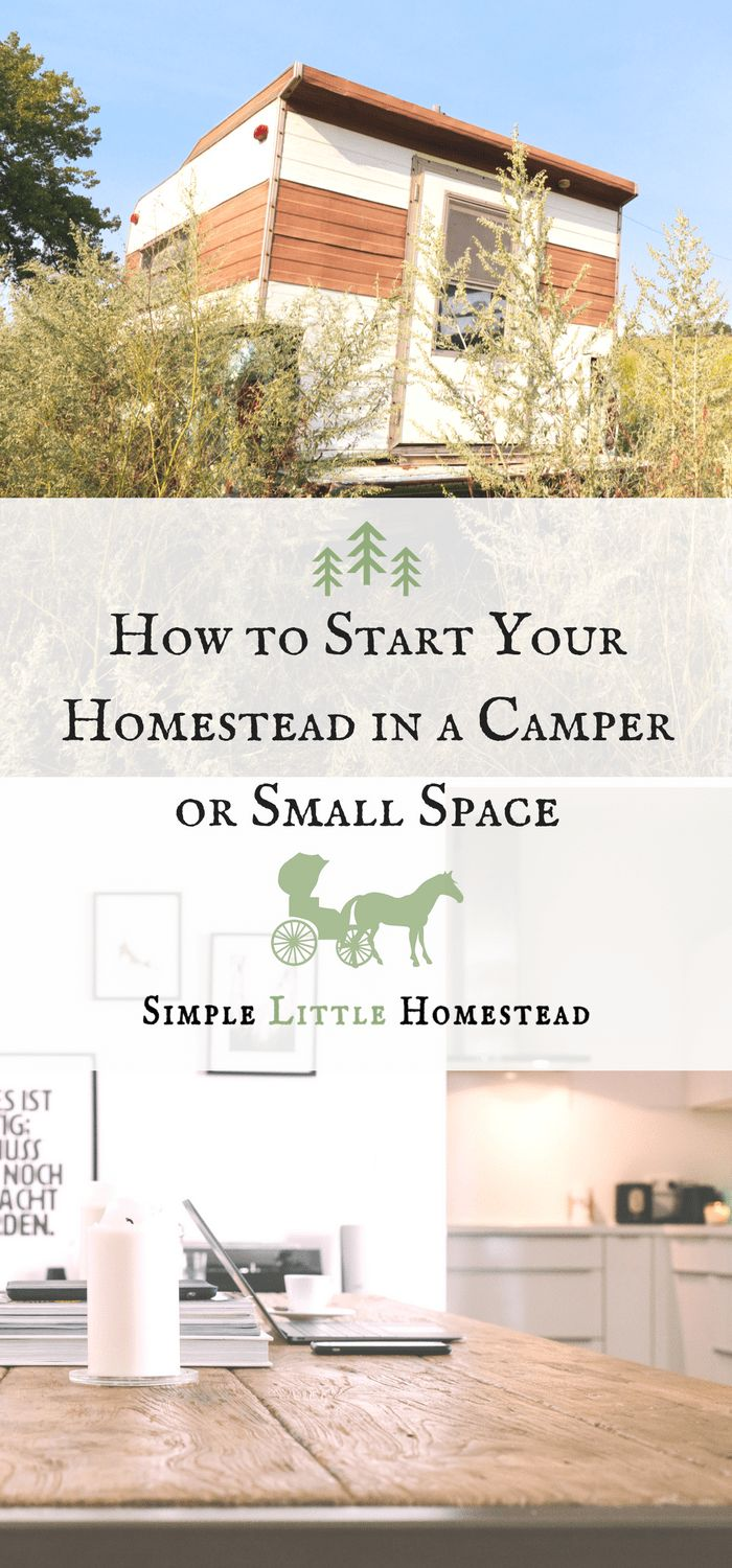 1661 best Homesteading ideas images on Pinterest | Farms, Homestead ...