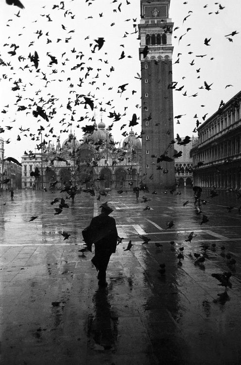 Piazza San Marco with St. Mark's Basilica in the background, Venice, Italy, 1952. Photo by Dmitri Kessel. S)