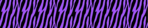 Purple Zebra Wallpaper Wall Border Teen Girls Room Decor ‪#‎decampstudios‬ http://stores.ebay.com/DeCamp-Studios