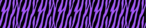 Purple Zebra Wallpaper Wall Border Teen Girls Room Decor #decampstudios http://stores.ebay.com/DeCamp-Studios