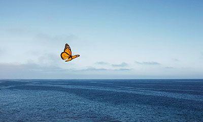 La esperanza es un estado de ánimo y está relacionada con nuestro sentido de la posibilidad. ¿Cómo podemos aumentar esta necesidad humana tan importante?
