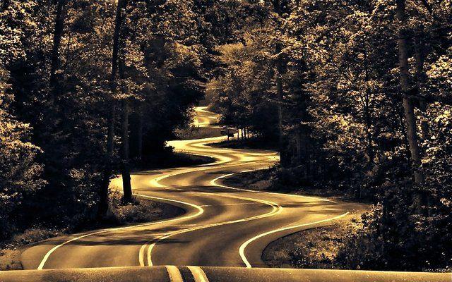 Théorème du motard et de l'automobiliste: le plus court chemin entre deux points passe par les pif-pafs.