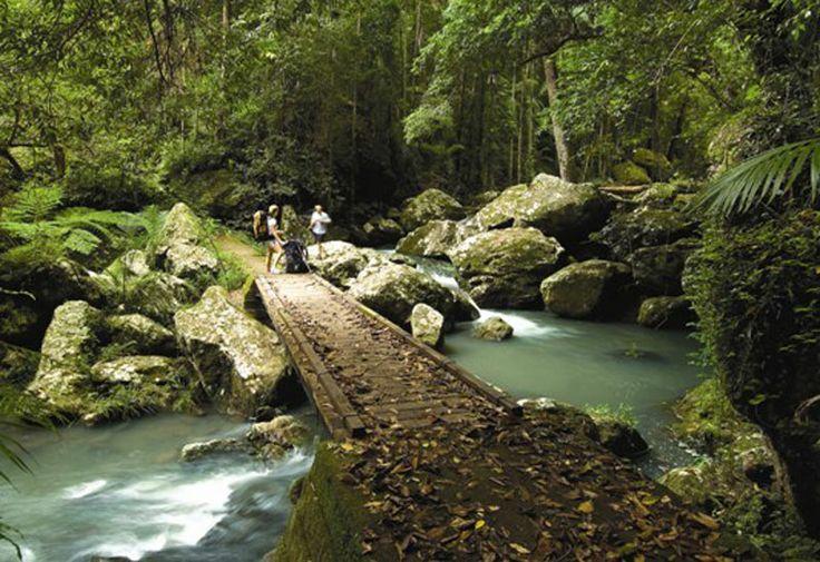 Obi Obi Creek, Sunshine Coast, QLD