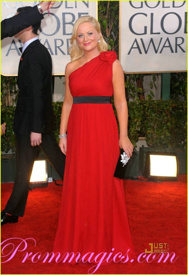 Amy Poehler One shoulder Red Carpet Evening Dress 2010 Golden Globe Awards