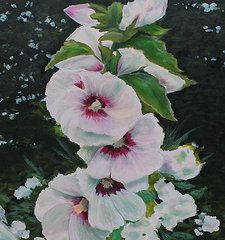 Ed Cabral Art - Rose of Sharon study by Ed Cabral