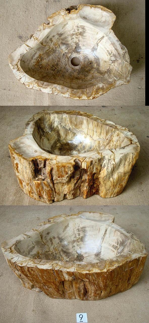 Petrified Wood Sink #9A Made from Petrified Teak (18