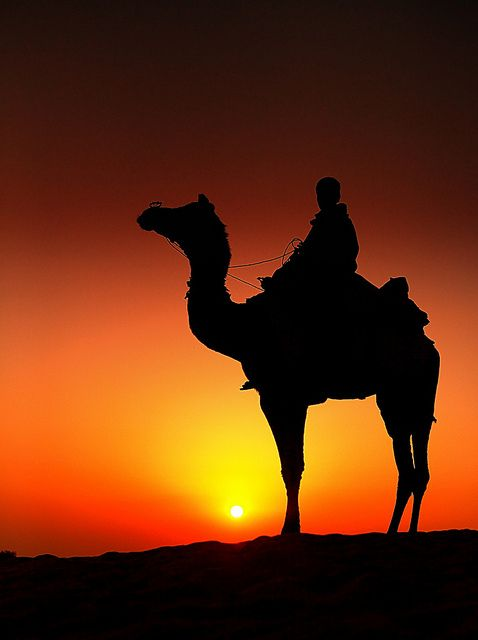 india rajasthan by peo pea, via Flickr