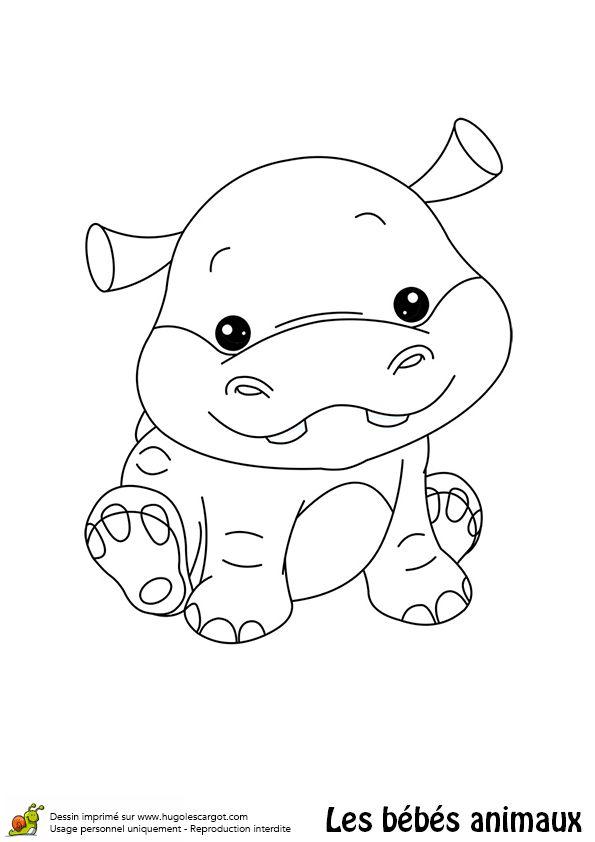 Coloriage bébé hippopotame - Hugolescargot.com