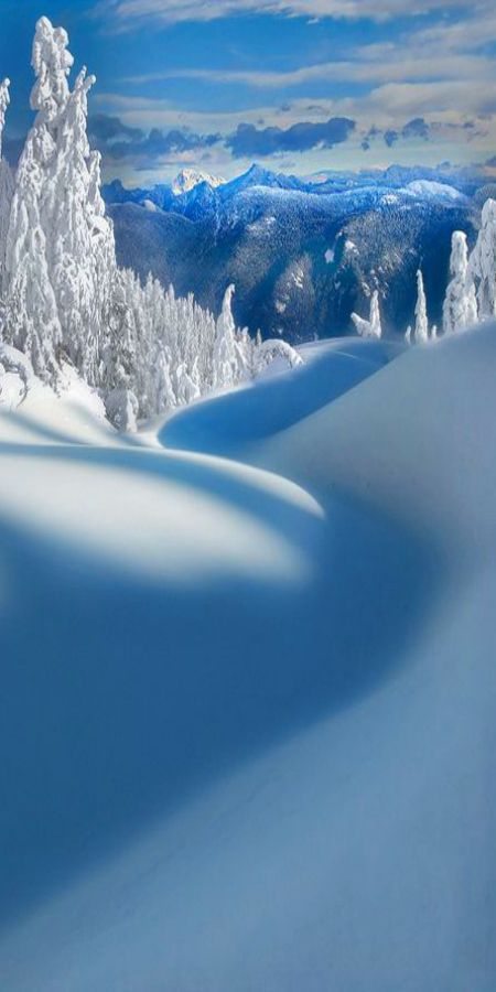 Mt Seymour Provincial Park ~ Vancouver, BC Canada by Kevin Mcneal