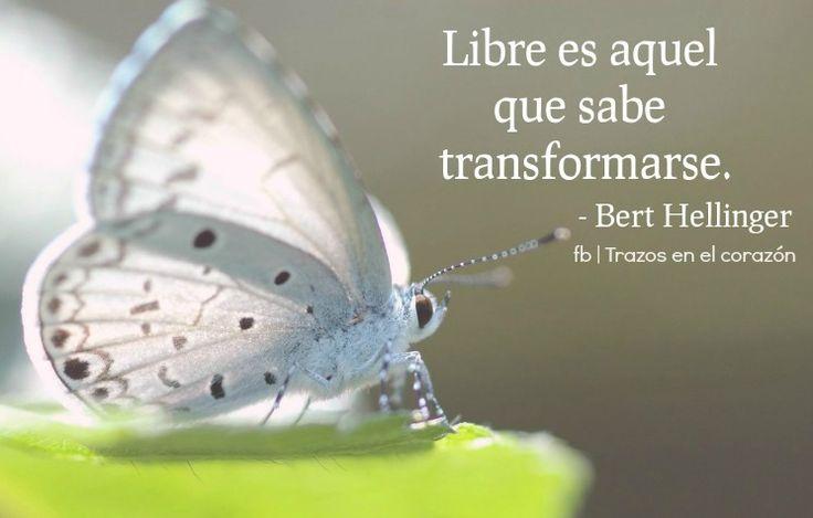 Libre es aquel que sabe transformarse. - Bert Hellinger.  @trazosenelcorazon