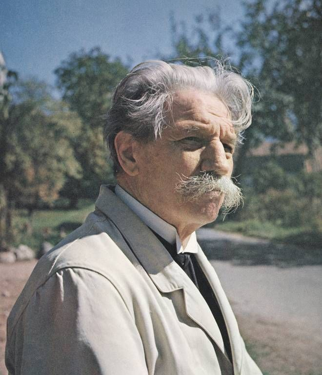 Albert Schweitzer also wanted to try and stop the spread of nuclear weapons and them being used in warfare.
