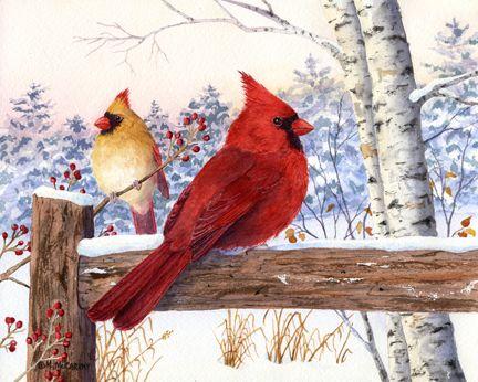 Cardinal Pair With Birch by Maureen McCarthy