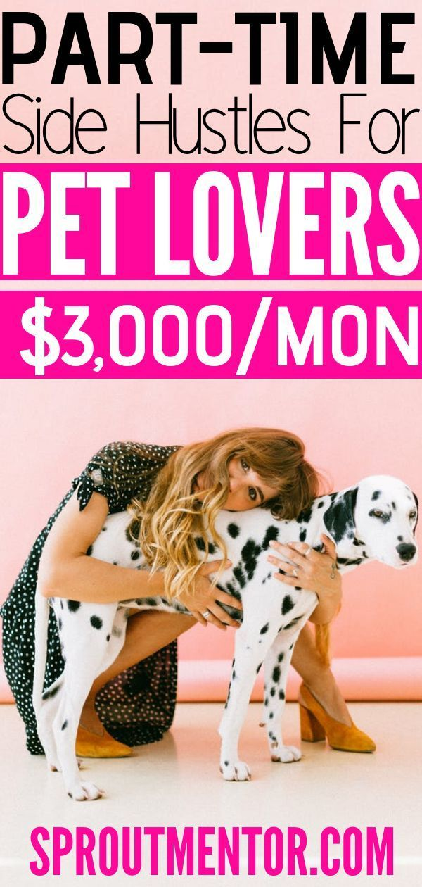 5 Of The Best Work From Home Jobs For Pet Lovers With Images Online Jobs From Home Working From Home Work From Home Jobs