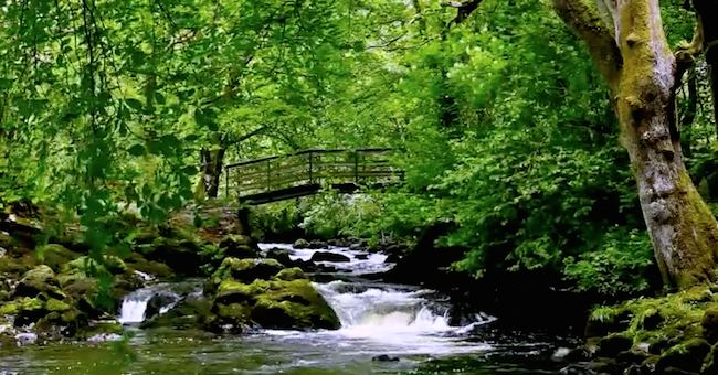 Insonnia: video cascata irlandese diventa rimedio virale