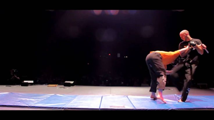 1,500 People watching Roy Elghanayan's Krav Maga LIVE!Roy Elghanayan and his school from Krav Maga L.A. represented Israel and Krav Maga as a Self Defense System at the United States Martial Arts Festival 2010 at Redondo Beach Performing Arts Center (July 18, 2010). Over 1,500 people came to see the show! #kravmaga #royelghanayan