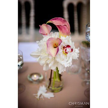 Photo from Maggie & Dorian collection by Chrisman Studios