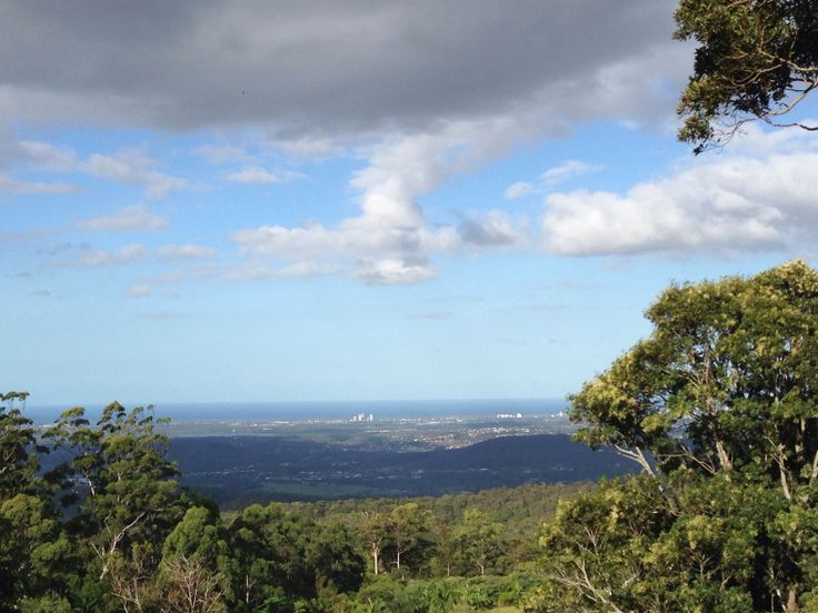 Tamborine Mountain views to the Gold Coast. #goldcoastdaytours #scenicdaytours #tamborinemountain