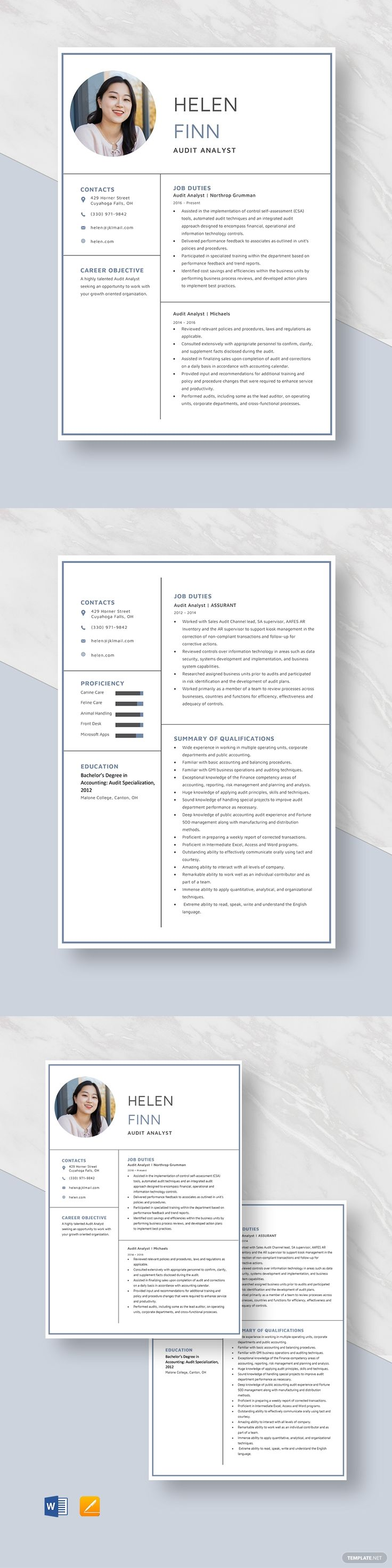 Audit Analyst Resume Template AD, , Sponsored, Analyst