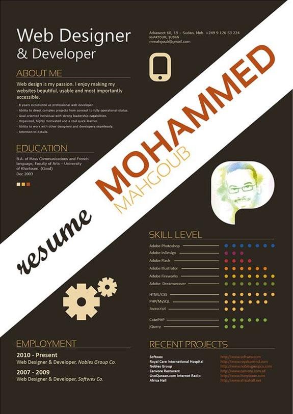 8 best UX Designer Resume images on Pinterest Resume, Charts and - web developer resume