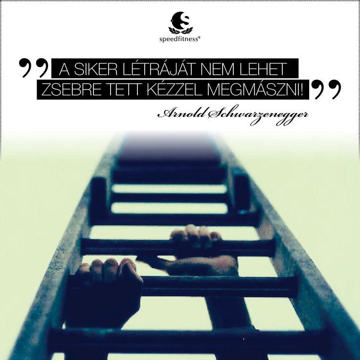 A siker létráját nem lehet zsebre tett kézzel megmászni!