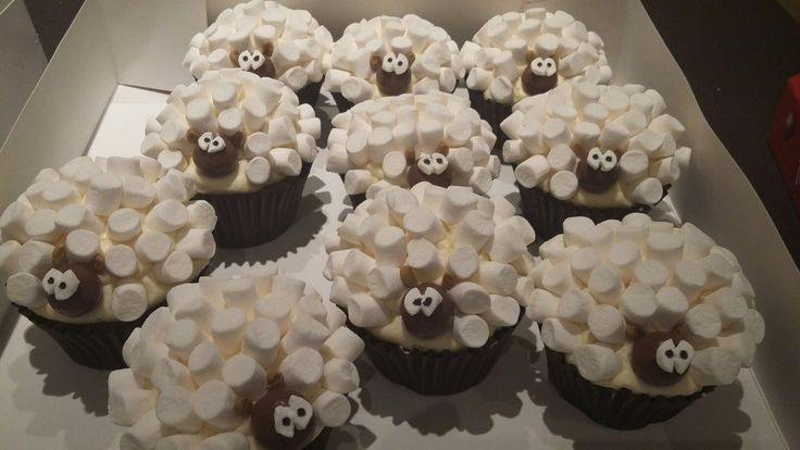 Sheep cupcakes, cute and quirky by Danielle Smith ( Rockylicious Cakes )