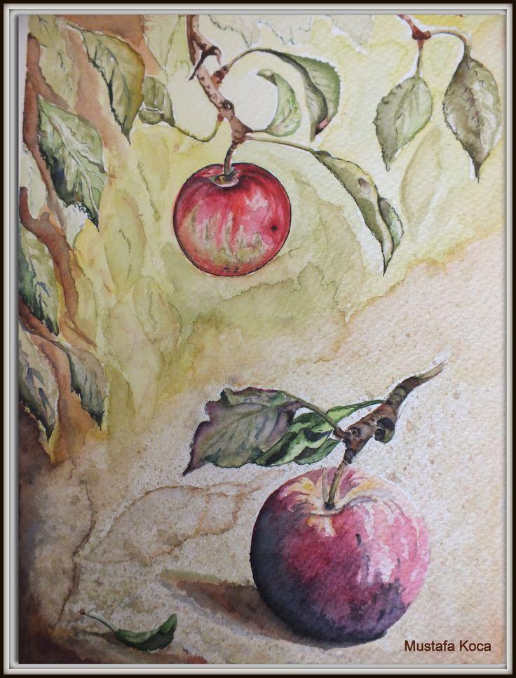 "watercolor ""apple"""