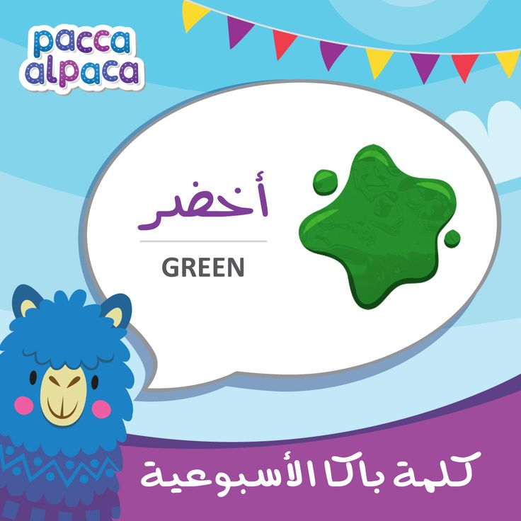 this week Pacca learns how to say green in Arabic!