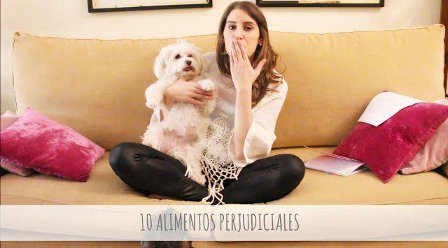 Con Perros y a lo loco | Vida perruna | Dogs & Lifestyle: [NUEVO VÍDEO] 10 Alimentos perjudiciales para nues...