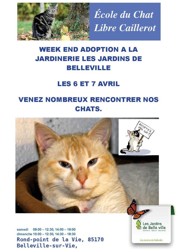 Week-end Adoption au Jardins de Belleville le 6 Et 7 avril 2013