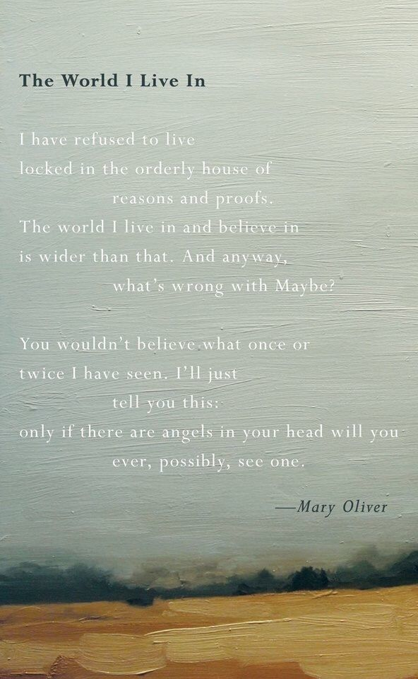 Mary Oliver Love Quotes Amusing 91 Best Poetry Images On Pinterest  Poetry Mary Oliver And Poems