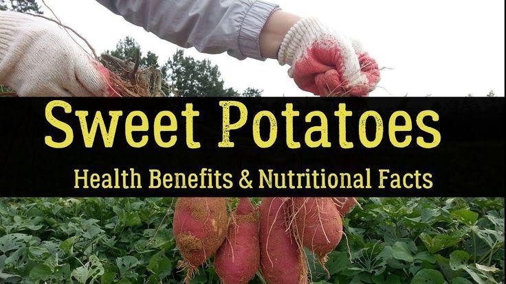 Sweet Potatoes (Kumara) - Health Benefits & Nutritional Facts