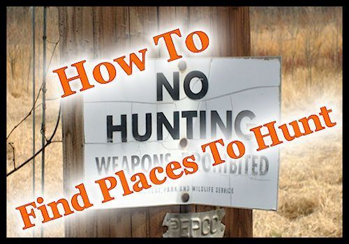 Hunting is a great way to fill the homestead freezer but what do you do if you don't have a place to hunt? Many modern homesteaders don't have a hundred acres of fields and woods, many …