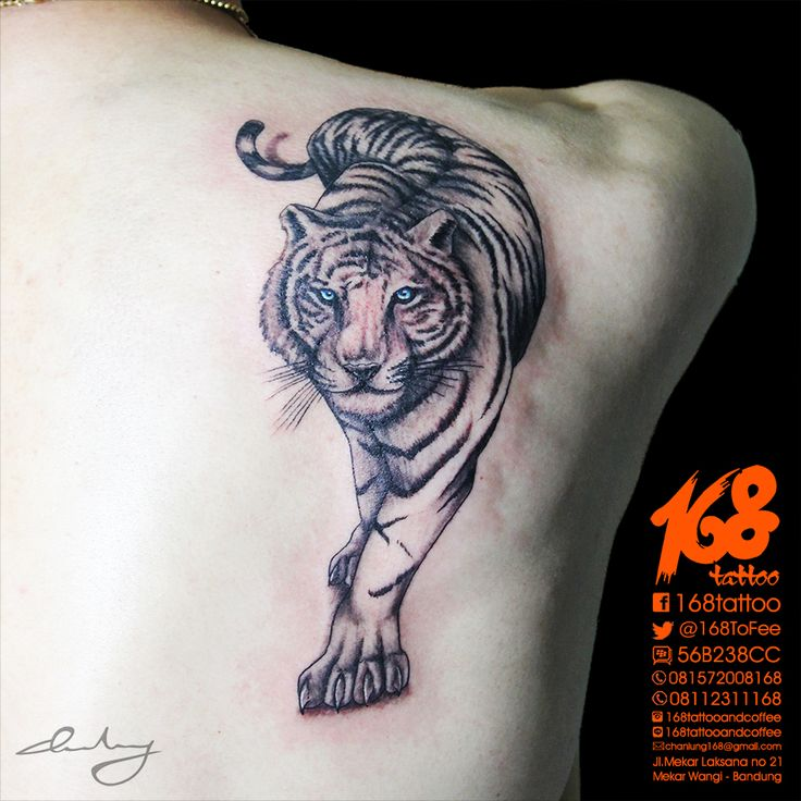 Tiger #Tattoo on back