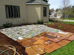 Deshalb solltest du dir Pappkartons in den Garten legen. Das Ergebnis wird dich erstaunen.