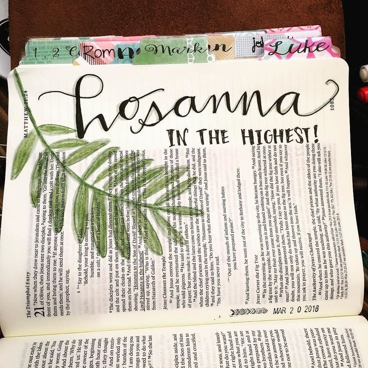 """""""And the crowds that went before him and that followed him were shouting """"Hosanna to the Son of David!  Blessed is he who comes in the name of the Lord!  Hosanna in the highest!"""" Matthew 21:9.  #hosanna #biblejournalingcommunity #illustratedfaith #biblejournaling #journalingbible http://ift.tt/1KAavV3"""