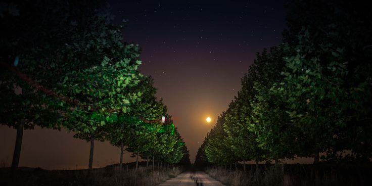 Ночная долина Лефкадия