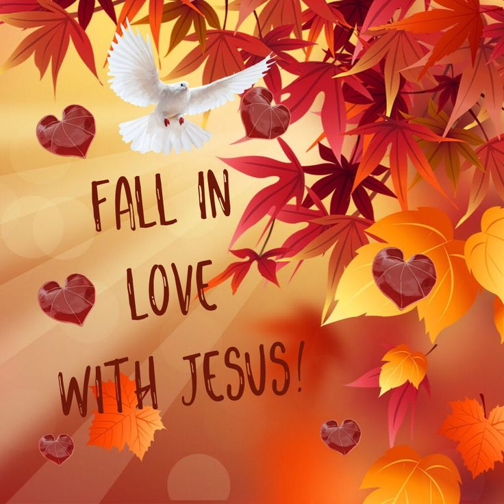 Truly Falling In Love With Jesus Brings Pure Joy And