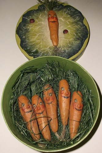 AWESOME CARROT BOX 5 CARROTS GRASS LADYBUGS LEERING GRIN FACES STRANGE ...