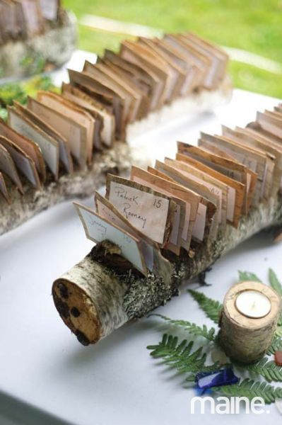 Seating arrangements set in birch logs for a natural, personalized touch at Meghan + Jono's wedding celebration in Sullivan, Maine. Photography by Anne Schmidt