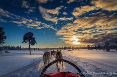 25viagens que vale apena fazer aomenos uma vez navida - Andar num trenó puxado por cães na Suécia