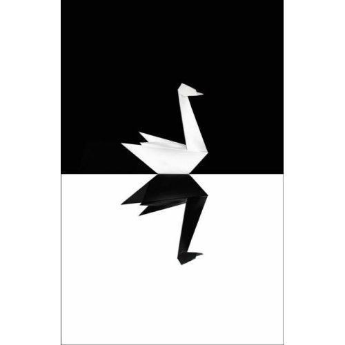 The Black Swan  - Spirit Walk Ministry (Article)