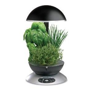 Countertop Herb Garden : herb gardening organic gardening indoor gardening indoor plants garden ...