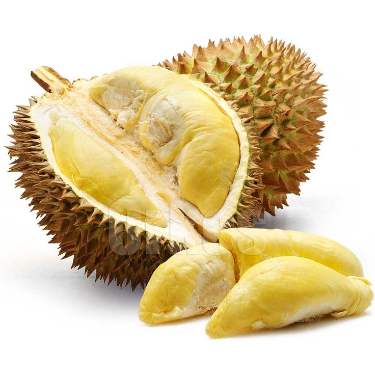 Durian Fruit. Durian has a famously strong smell, and is therefore banned from most public places in Southeast-Asia, including hospitals and trains. When travelling, it's always humorous for Westerners to see a 'no durian' sign posted beside the 'no smoking' signs!