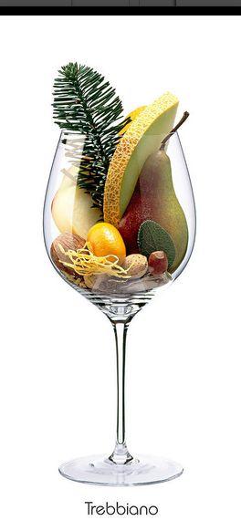 TREBBIANO: Apfel, Mandel, Birne, Walnuss, Zitrone (Schale), Melone, Salbei, Tannenzweig, Austernschale (getrocknet