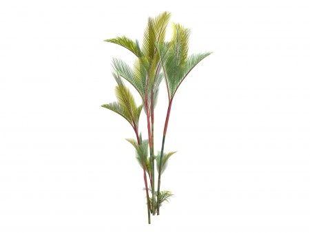 lipstick palm tree red ceiling wax palm tree