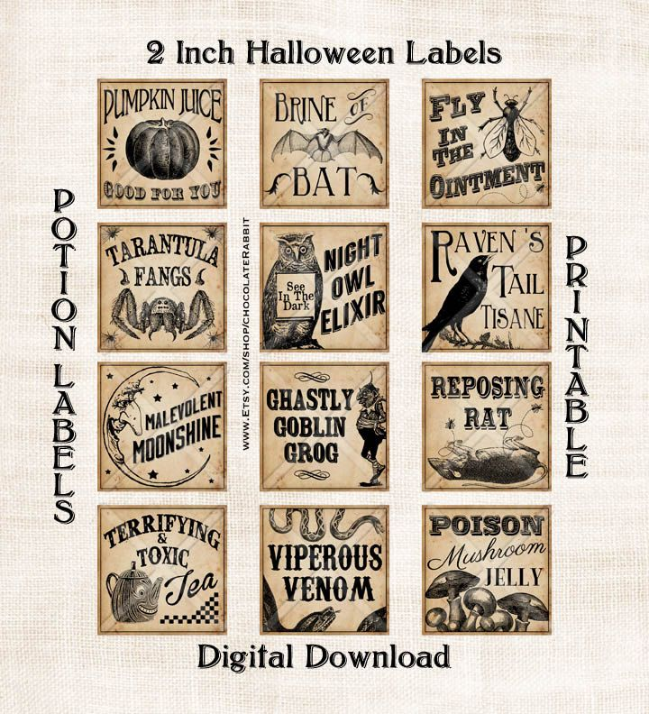 Vintage Potion Labels Halloween Witch Digital by chocolaterabbit